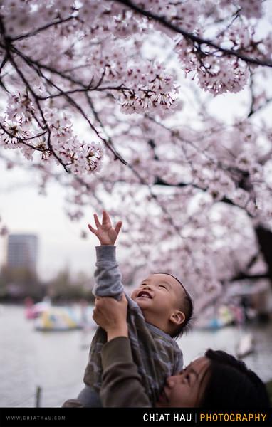 Japan_Tokyo_Apr_2016-351.jpg