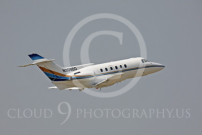 British Aerospace BAe 125 Business Jet Airplane Pictures