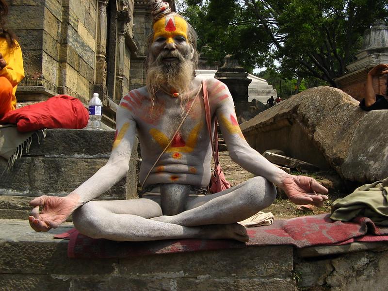 A Hindu guru