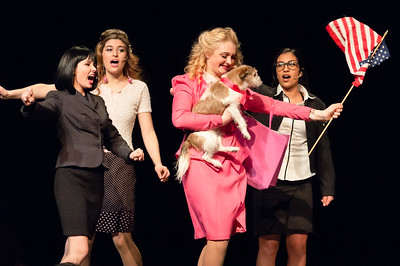 Legally Blonde - NHHS, March 2017