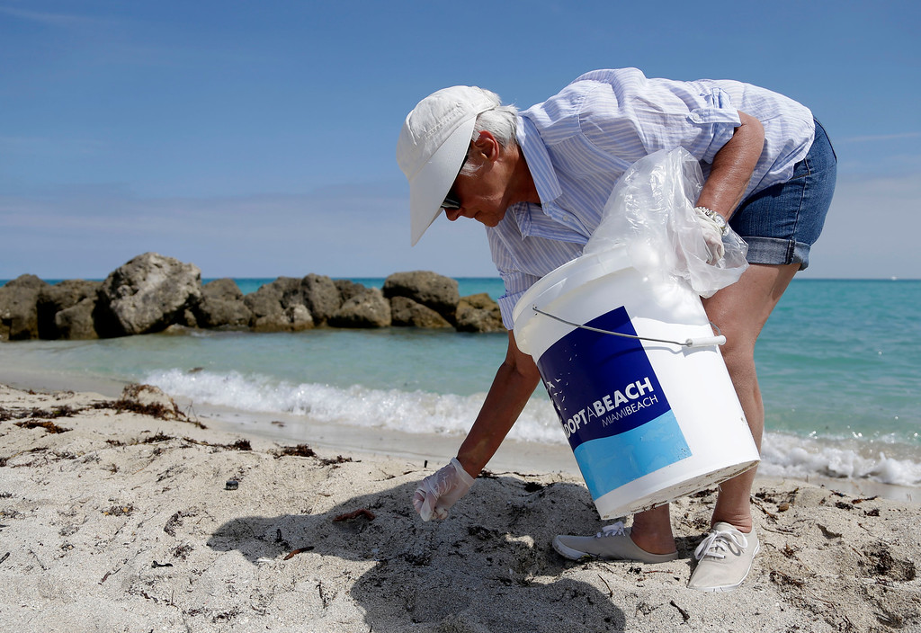 . Maria Caiafa, vacationing from Laurence Harbor, N.J., gathers trash on the beach while volunteering on Earth Day, Tuesday, April 22, 2014, in Miami Beach, Fla.  (AP Photo/Lynne Sladky)