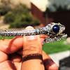 4.50ctw Sapphire and Diamond Serpent Bangle 19