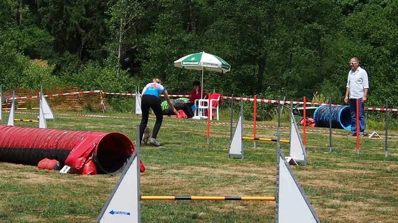 Jumping Joyce Wissler