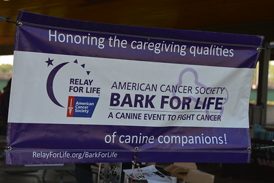 Bark for Life: A Canine Event to Fight Cancer