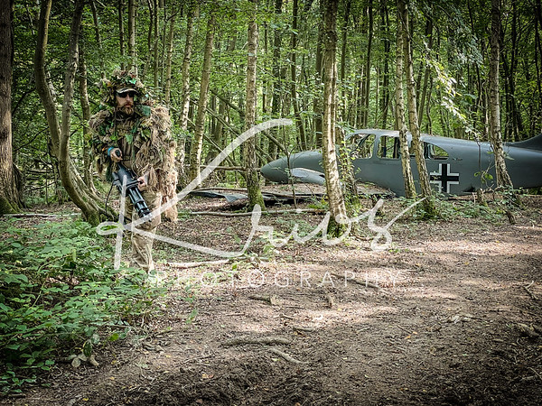 Sussex Woodland Activities