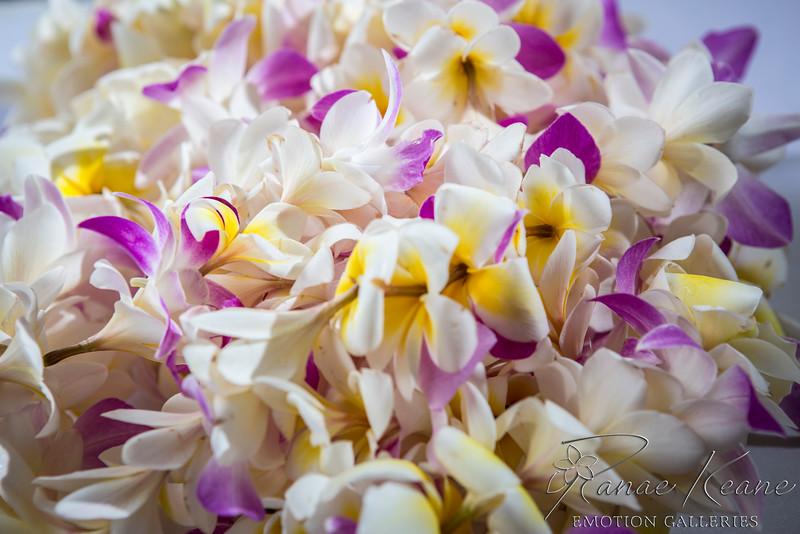003__Hawaii_Destination_Wedding_Photographer_Ranae_Keane_www.EmotionGalleries.com__141018.jpg