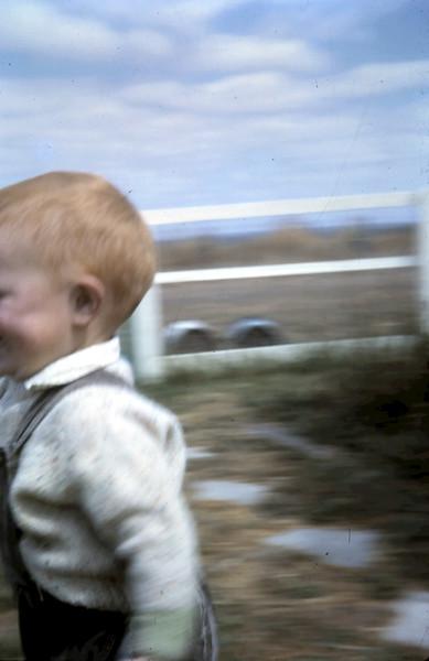 1965-2-12 (3) David 14mths.JPG