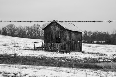 Tobacco Barns of Robertson County Tennessee