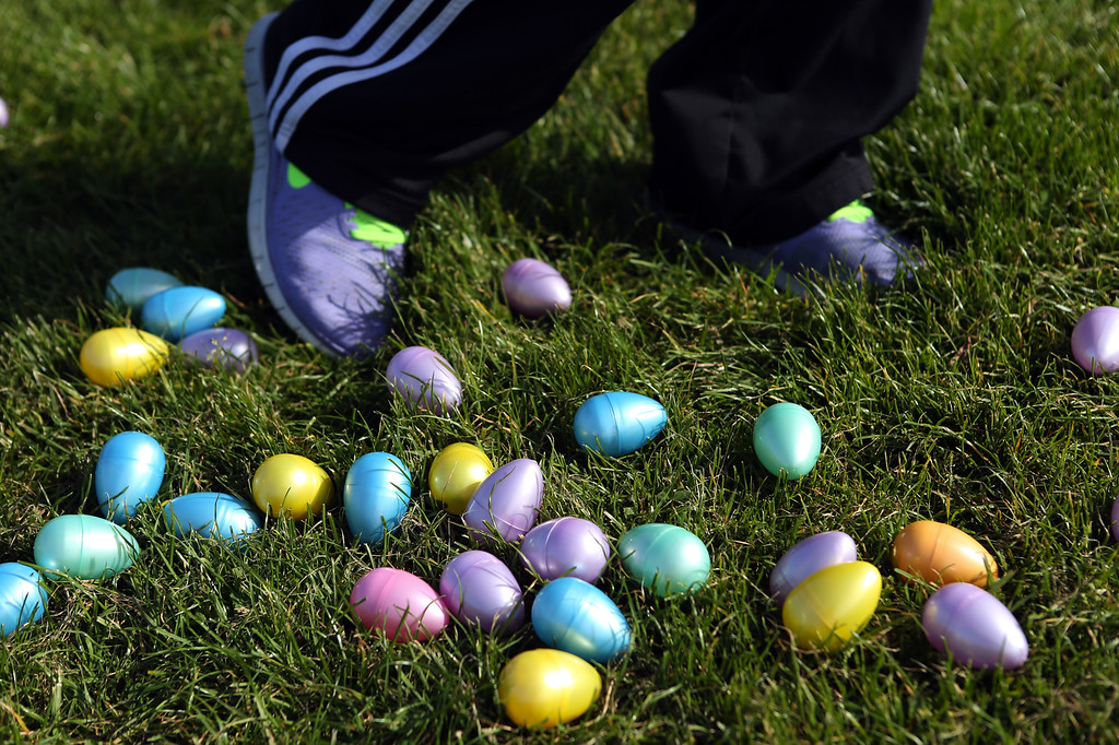 . A volunteer spreads out plastic Easter eggs for the annual San Leandro egg hunt held at Marina Park in San Leandro, Calif., Saturday, April 12, 2014. The event has been held every year since 1951 and this year is sponsored by the San Leandro Optimist Club. 8,000 eggs with a candy or sticker surprise were given away. (Anda Chu/Bay Area News Group)