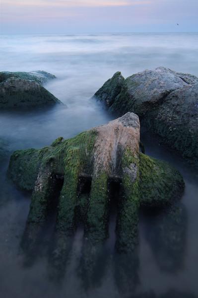 Remnants, Ashbridges Bay, the Beach, Toronto