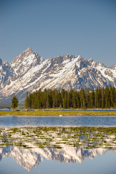 Tetons over Lake Jackson