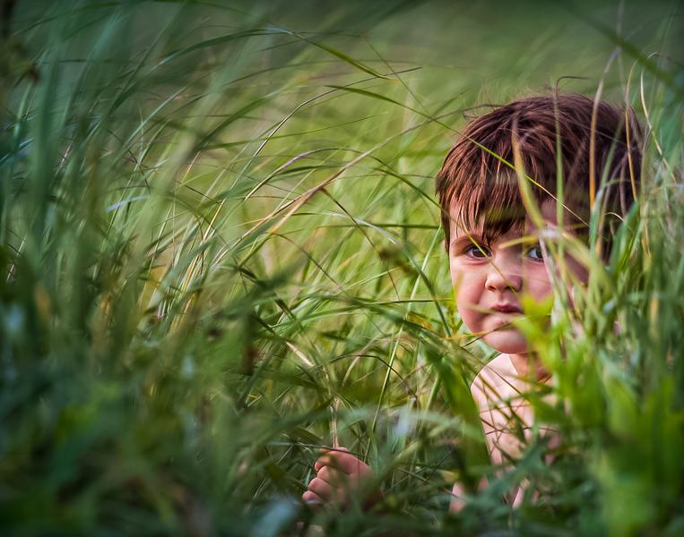 Hiding in the weeds