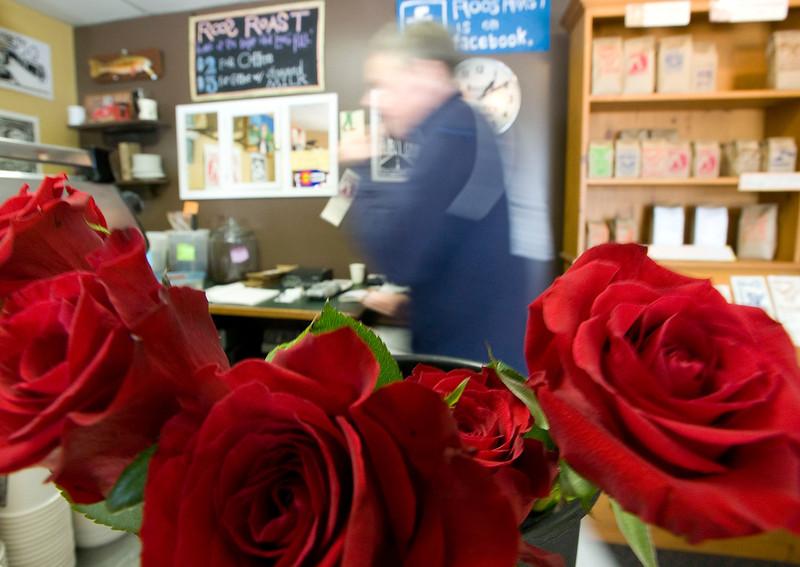 Roos_Roses_2.jpg