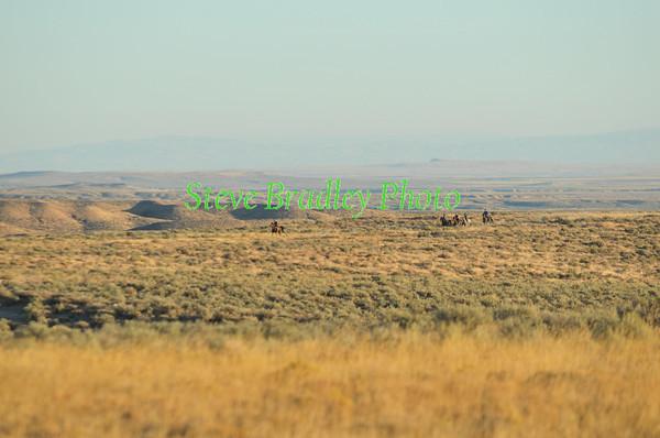 Canyonlands D2