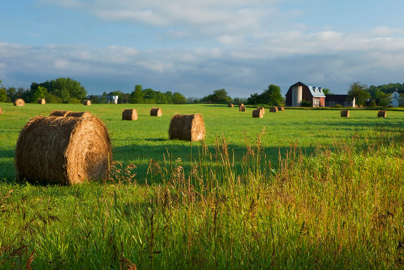 Haybales and farmhouse, Wisconsin