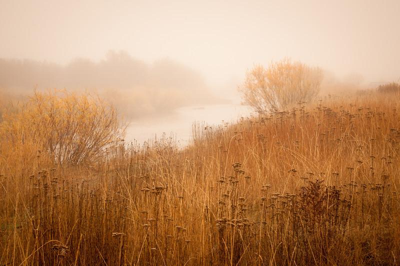 New Meadows Fall 2011-8.jpg