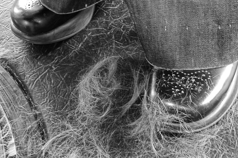 L1000920-Hair on Floor.jpg