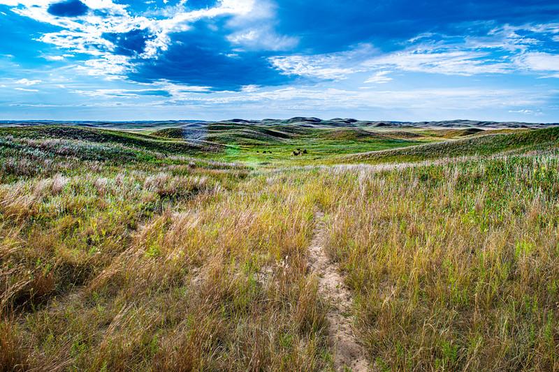 Horn Ranch-1303.jpg