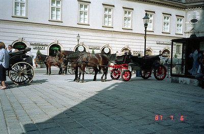 Horse and buggy awaiting tourists!  They usually park adjacent to St. Stephen's Cathedral  which is central to Vienna.