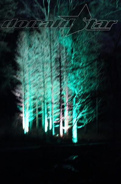 Longwood Gardens 2012-01-06 069.JPG
