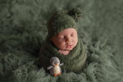 Lucas • Newborn
