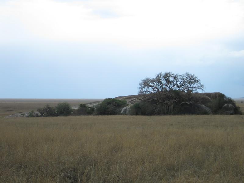 Tanzania14-3477.jpg