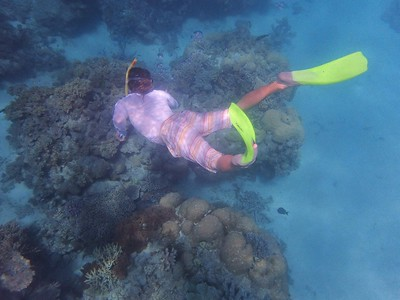 July 16, 2015 - Cairns - Great Barrier Reef