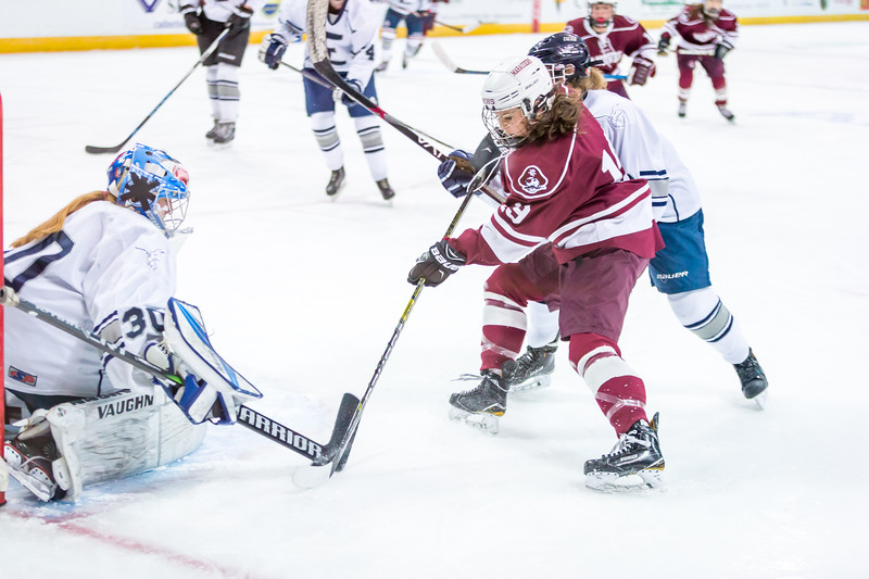 2018-2019 HHS GIRLS HOCKEY VS EXETER D1 STATE CHAMPIONSHIP GAME-502.jpg