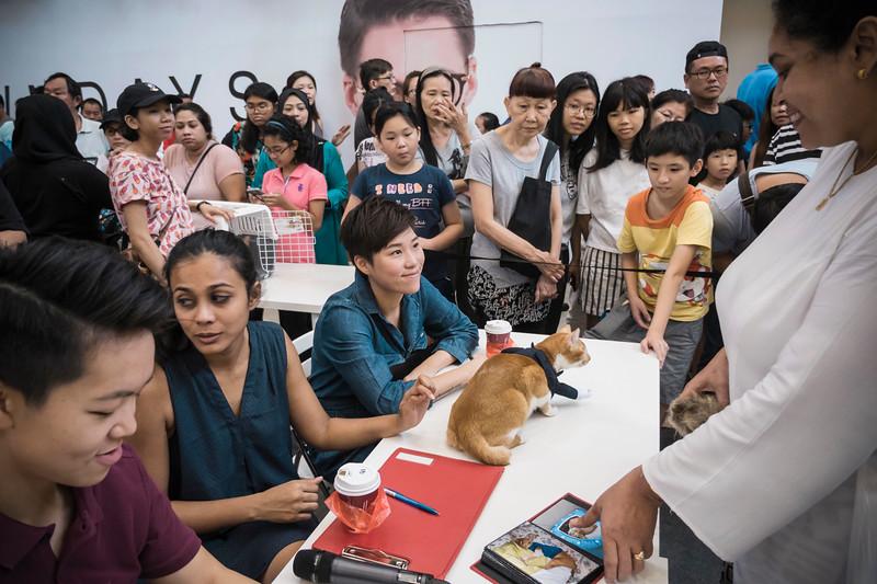 VividSnaps-The-Seletar-Mall-CAT-Dress-Up-Contest-237.jpg