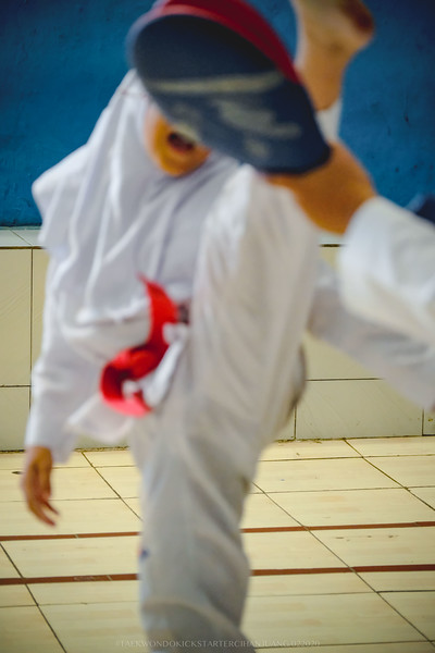 KICKSTARTER Taekwondo 02152020 0213.jpg