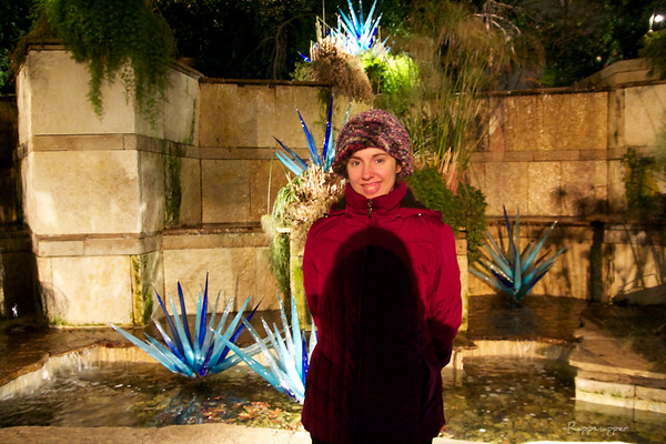 Arboretum Chihuly Nights 12-28-12
