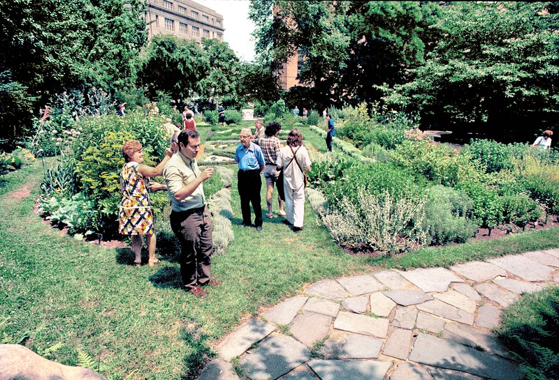 The medieval knot garden features traditional herbs.