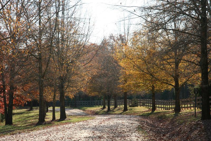 2012-11-23 05.11.09.jpg