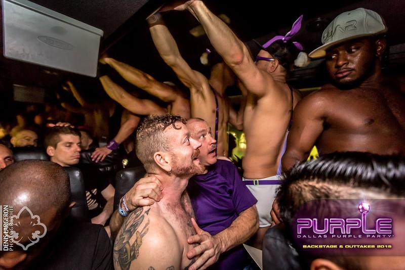 2015-Purple--8304.jpg