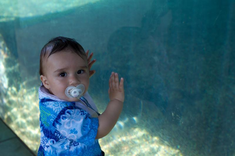Hawaii2012-2075.jpg