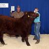 Reserve Steer K Payne