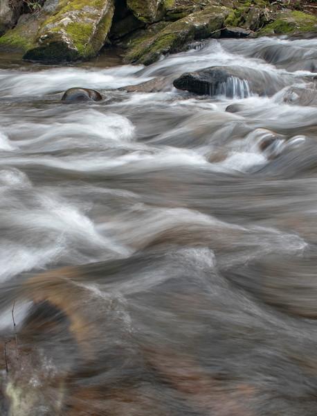 Roan Mt Dancing Water