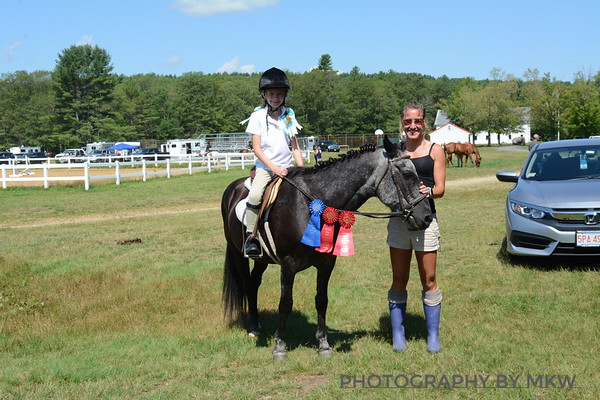 Horse Show 7.16.17