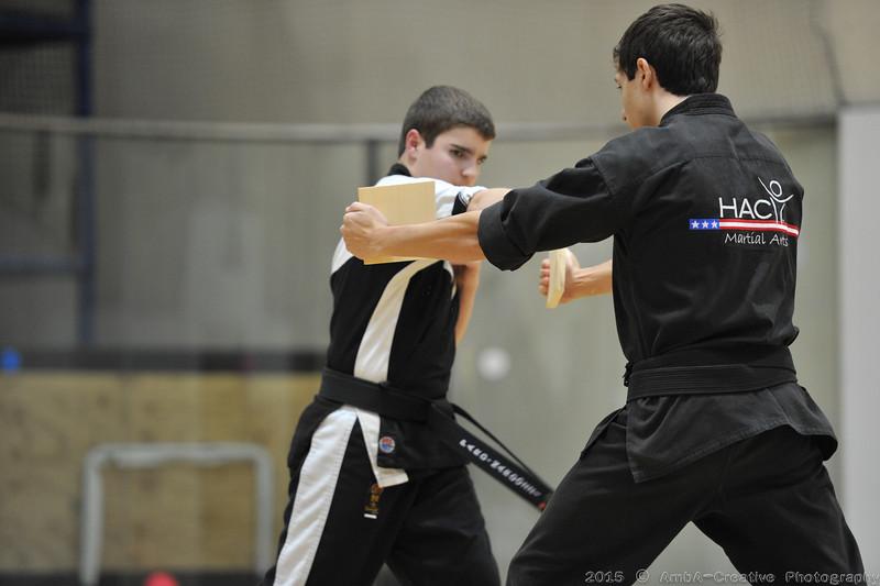 2015-12-18_HAC_KarateBeltPromotion@HockessinDE_48.jpg