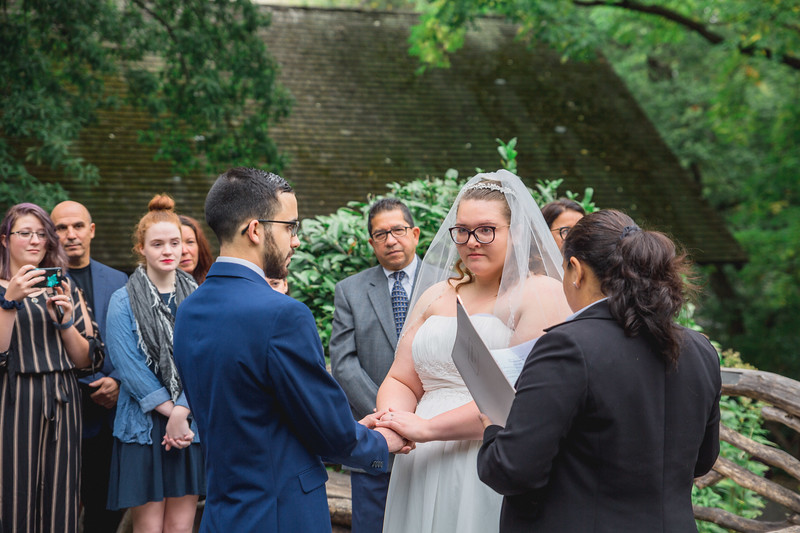 Central Park Wedding - Hannah & Eduardo-50.jpg