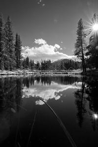Reflection along Homestake Creek, CO