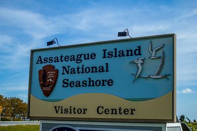 2015 Assateague Island National Seashore - MD