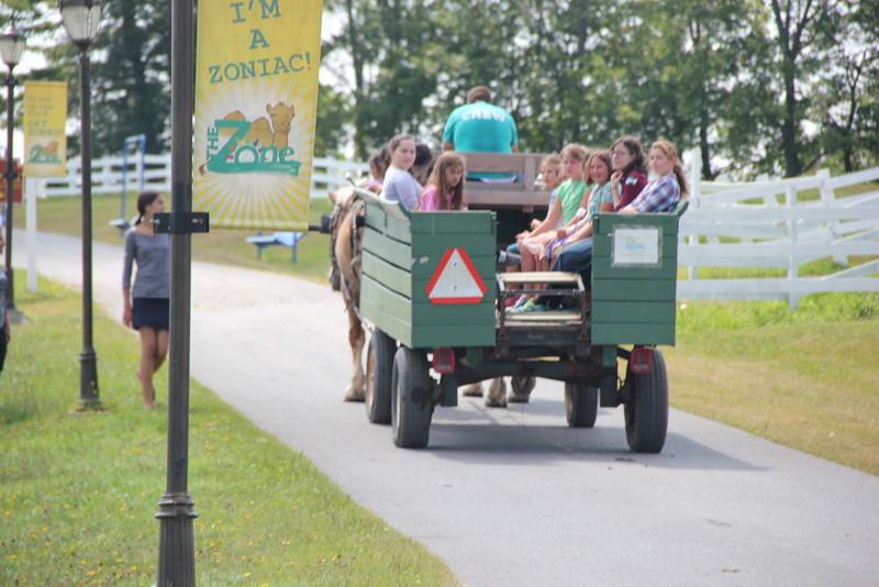 kars4kids_thezone_camp_girlsDivsion_activities_Horse&Buggy (10).JPG