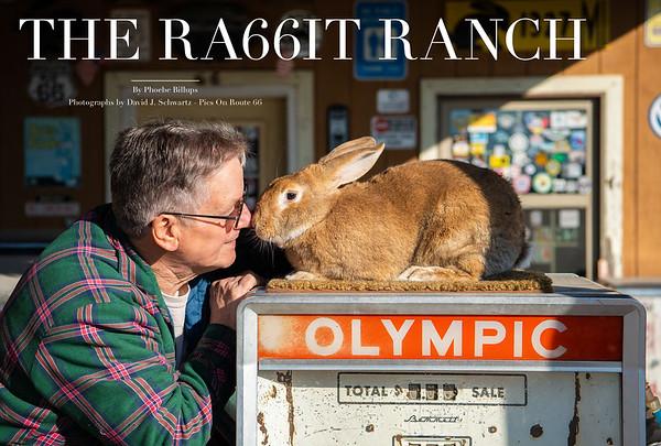The Ra66it Ranch - Henry's Rabbit Ranch