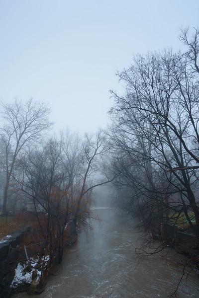 A Foggy Morning on Mimico Creek