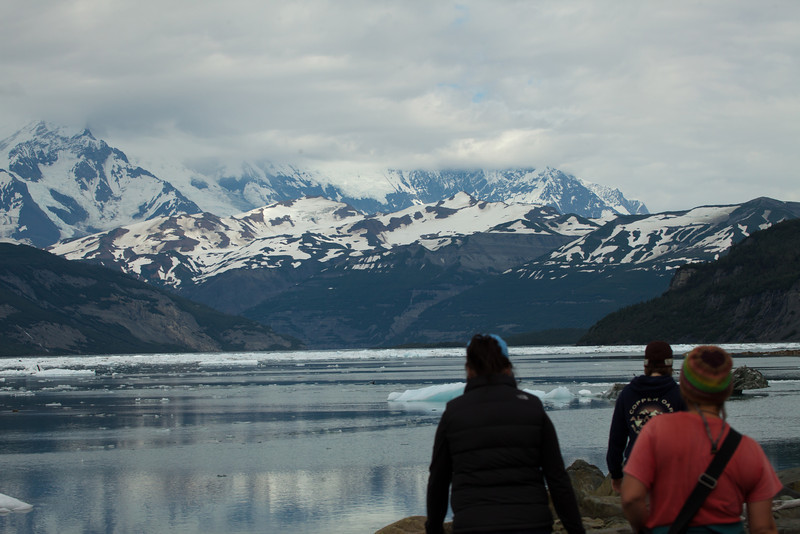 Alaska Icy Bay-4098.jpg