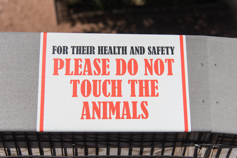 Syracuse Zoo August 2020-2.jpg