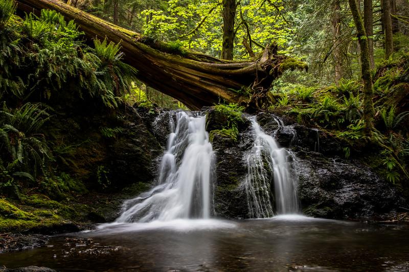 Rustic Falls 2