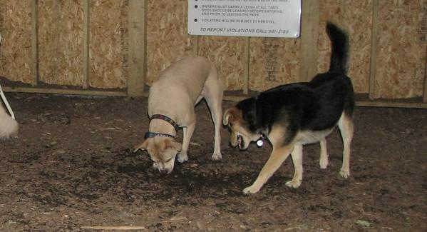 PICS JUNE 12::Lucy & Maddie