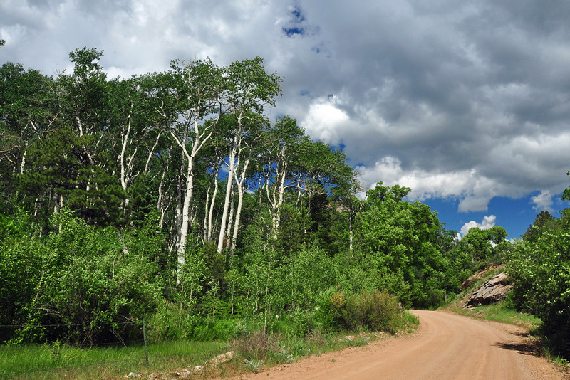 Before La Veta pass, I cut north on a dirt road that connects to highway 69.